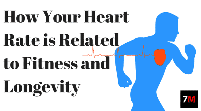 How Your Heart Rate is Related to Fitness and Longevity