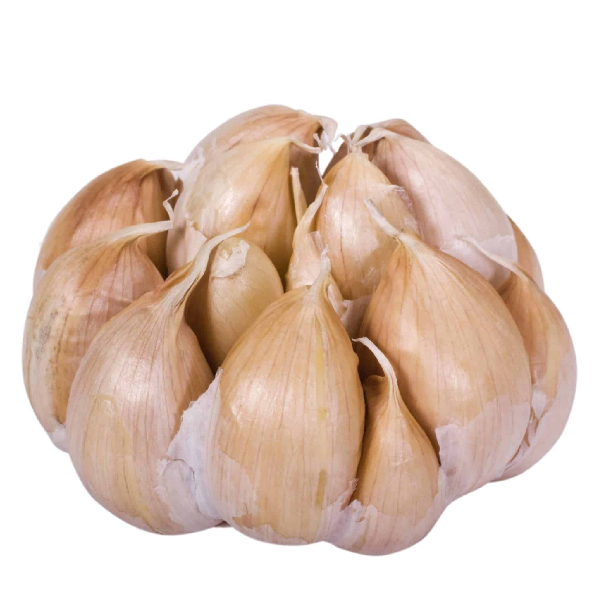 fermented garlic benefits