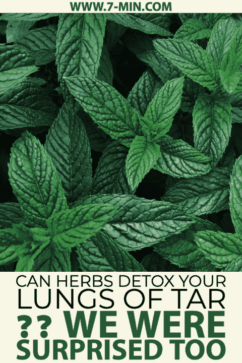 Can Herbs Detox Your Lungs of Tar