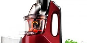 SKG New Generation Wide Chute Juicer Review